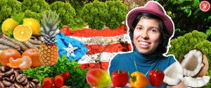 Yoguely provides a list of farmers and supermarkets with food delivery service in Puerto Rico.